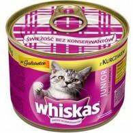 Pokarm dla kotów z kurczakiem w galarecie