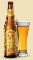 Złote Lwy Piwo